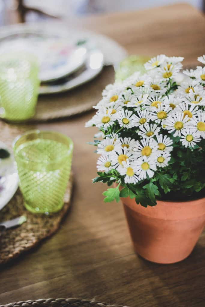spring table setting, spring tablescape ideas, spring decorating, entertaining at home, entertaining on a budget