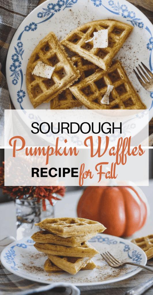 pumpkin sourdough waffles recipe for fall