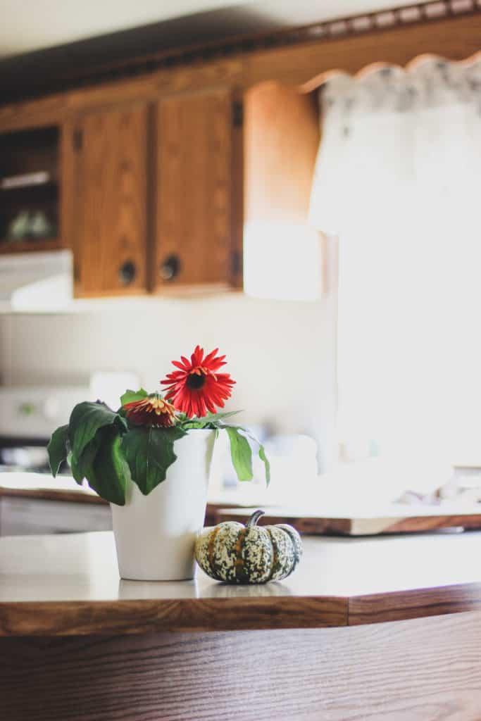 seasonal living tips and ideas