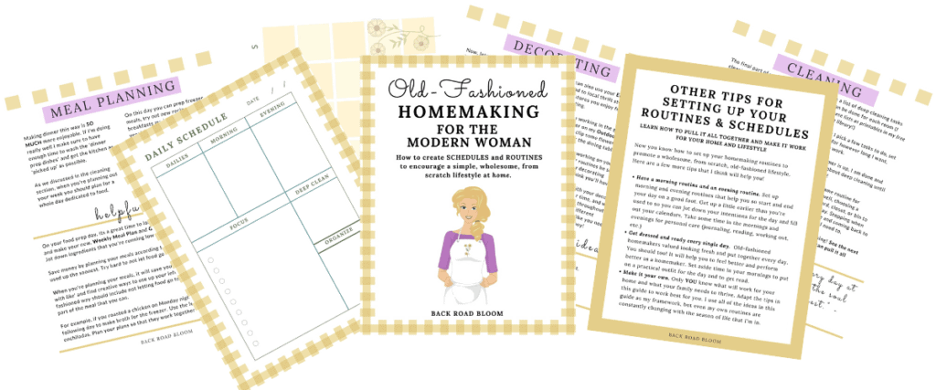 vintage homemaking schedules and routines